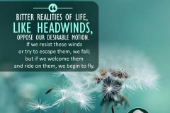 """""""Bitter realities of life, like headwinds, oppose our desirable motion. If we resist these winds or try to escape them, we fall; but if we welcome them and ride on them, we begin to fly."""""""