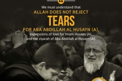 We must understand that Allah does not reject tears for Aba Abdillah al Husayn (A), expressions of love for Imam Husayn(A), and the ziyarah of Aba Abdillah al Husayn (A).