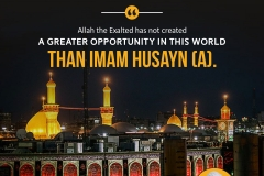 Allah the Exalted has not created a greater opportunity in this world than Imam Husayn (A).