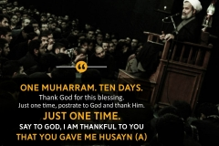 One Muharram. Ten days. Thank God for this blessing. Just one time, postrate to God and thank him. Just one time. Say to God, I am thankful to you that you gave me Husayn (A)""