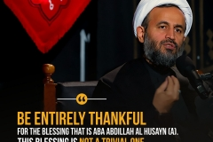 Be entirely thankful for the blessing that is Aba Abdillah Al Husayn (A). This blessing is not a trivial one.