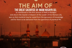 The aim of the great sacrifice of Imam Husayn (A), as mentioned in the first sermon of Nahj al-Balagha and also in the Ziyarat e Arabeen of the Leader of the Martyrs (A) was so that mankind may be saved from the ignorance of knowledge as well as for them to be delivered from the ignorance of practical life.