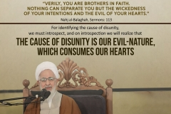"""Verily, you are brothers in faith. Nothing can separate you but the wickedness of your intentions and the evil of your hearts."" Nahj al-Balaghah, Sermons: 113 For identifying the cause of disunity, we must introspect, and on introspection we will realize that the cause of disunity is our evil-nature, which consumes our hearts."
