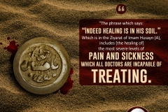 """The phrase which says: 'Indeed healing is in his soil.' Which is in the Ziyarat of Imam Husayn (A), includes [the healing of] the most severe levels of pain and sickness which all doctors are incapable of treating."""