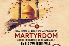 Imam Husayn (A), endured so many calamities, Martyrdom and the imprisonment of his own family, by his own (free) will.