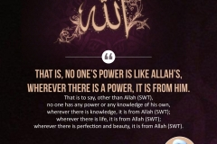 No one's power is like Allah's, wherever there is a power, it is from Him. That is to say, other than Allah (SWT), no one has any power or any knowledge of his own, wherever there is knowledge, it is from Allah (SWT); wherever there is life, it is from Allah (SWT); wherever there is perfection and beauty, it is from Allah (SWT).