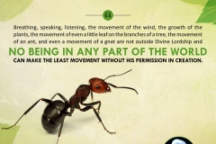 """Breathing, speaking, listening, the movement of the wind, the growth of the plants, the movement of even a little leaf on the branches of a tree, the movement of an ant, and even a movement of a gnat are not outside Divine Lordship and no being in any part of the world can make the least movement without His permission in creation."""