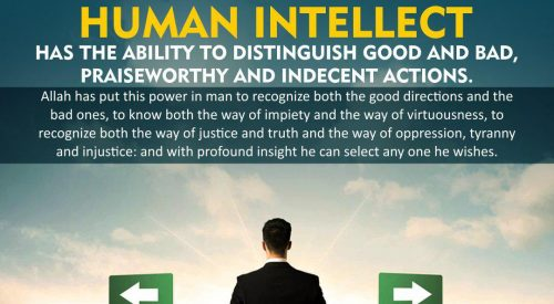 Human Intellect (Ayatollah Misbah Yazdi)