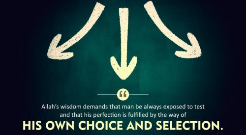 Man's Own Choice and Selection (Ayatollah Misbah Yazdi)