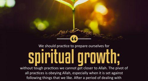 Spiritual Growth (Alireza Panahian)