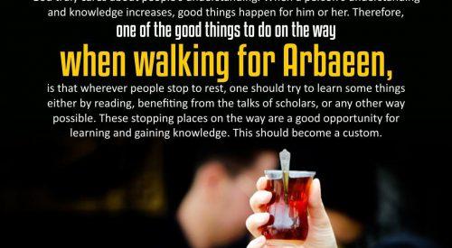 Walking for Arbaeen (Alireza Panahian)