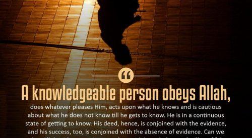 Knowledgeable Person Obyes Allah (Ayatollah Taqi Bahjat)
