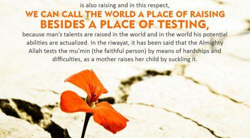 World a Place of Raising (Ayatollah Misbah Yazdi)