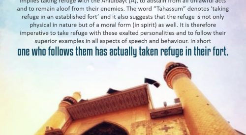 Wilayat of the Ahlulbayt (as)