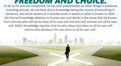 Freedom and Choice (Ayatollah Murada Mutahhari)