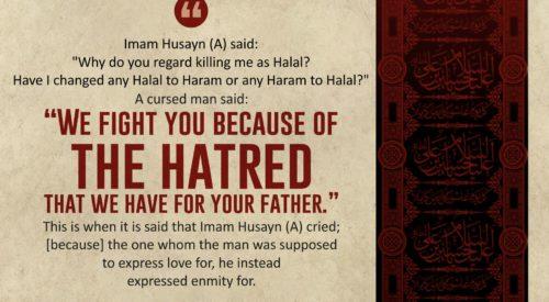 Imam Husayn (A) Sayings (Ayatollah Taqi Bahjat)